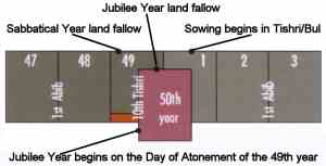locating the 50th or jubilee year